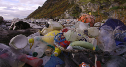 Plastic eating system could help solve recycling crisis