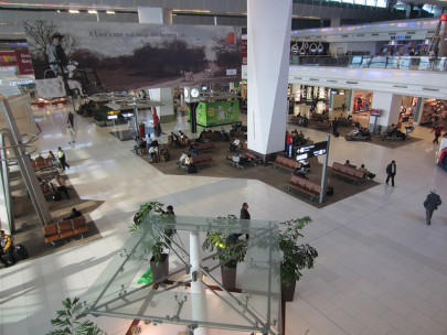 How Is Delhi Airport Using Nature to Combat Pollution?