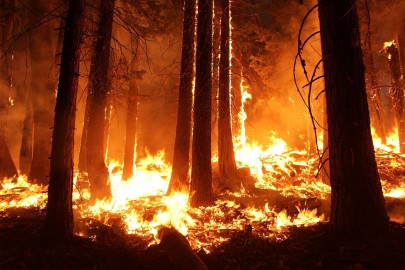 How Much Pollution Is Caused by Wildfires?